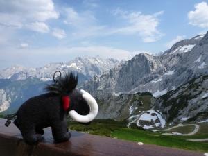 Team Mammut