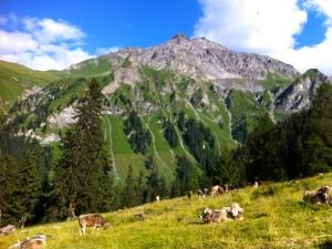Durch die wundervolle Schweiz