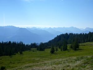 panorama2_240813